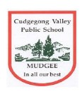Cudgegong Valley Public School - Canberra Private Schools