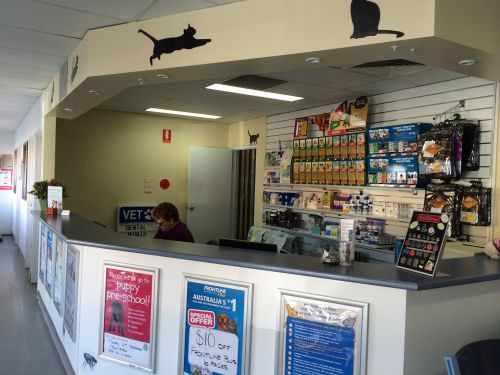 Albion Park Veterinary Hospital - Canberra Private Schools